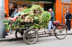 Bike market.